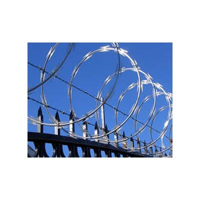 Coiled Razor Wire